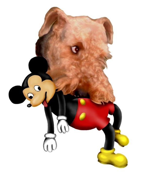 http://robertcmorin.com/Comp/Bruno_with_Mickey-2.jpg