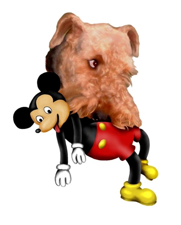 http://robertcmorin.com/Comp/Bruno_with_Mickey-4.jpg