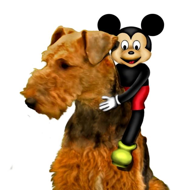 http://robertcmorin.com/Comp/Mickey_Riding_Bruno.jpg